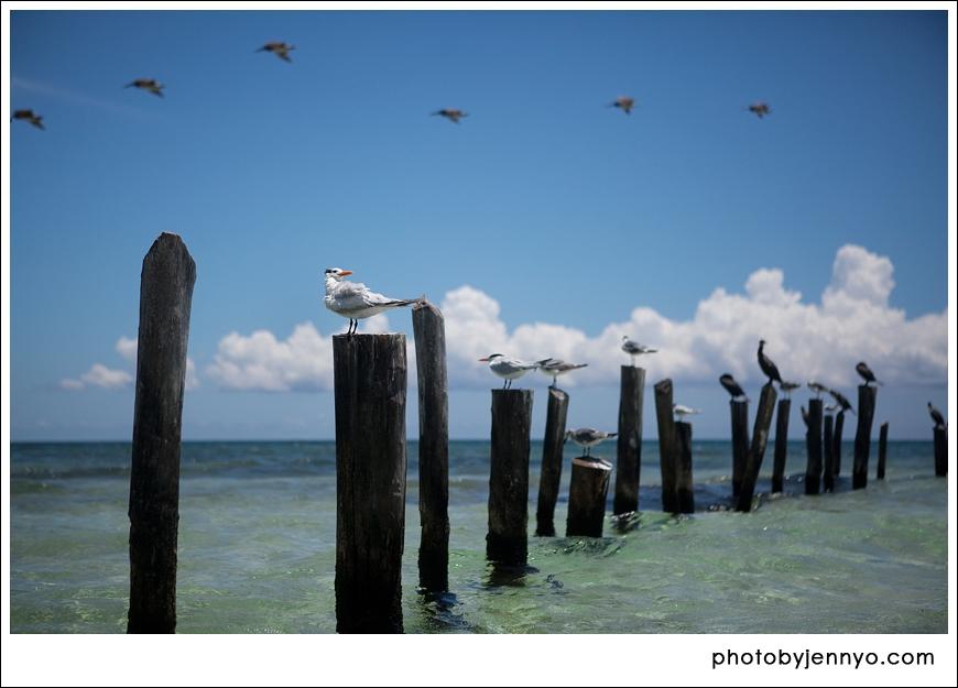 Playa Del Carmen, Mexico, Travel, Photographer